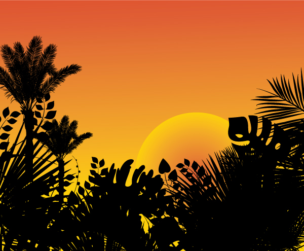 tropical sunset Tropical sunset